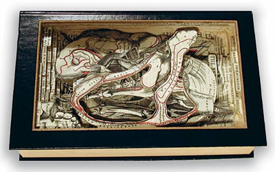 Brian Dettmer, Book art, surgical tools, sculpture, Carving, Collage